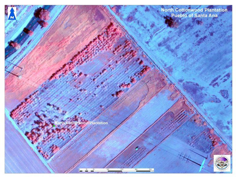 North Cottonwood Plantation Dump aerial