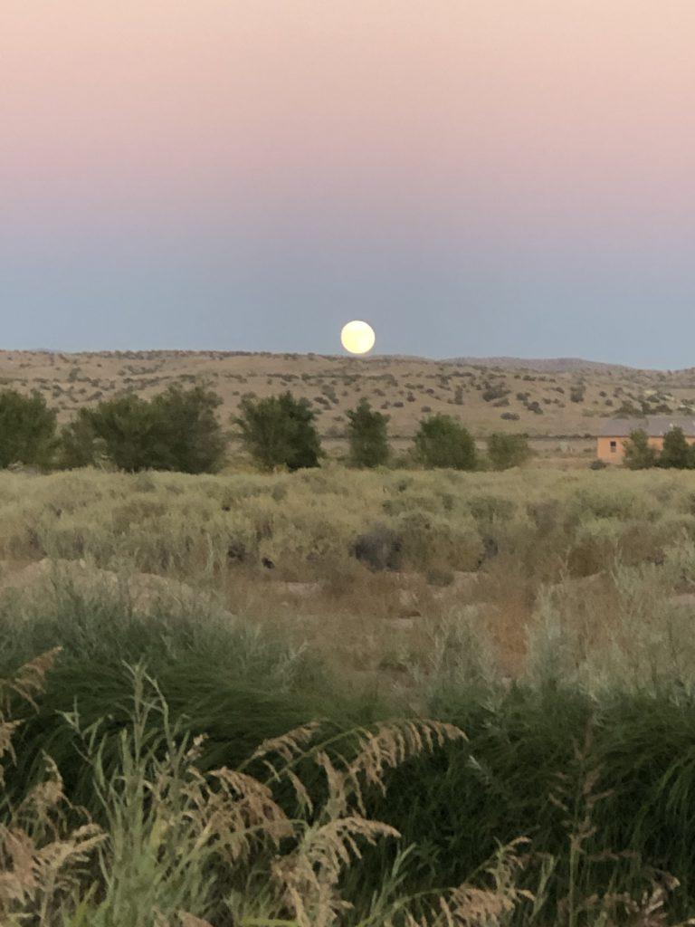 Moon rising (photo by Charlene Pino)